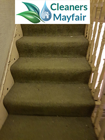 carpet cleaning mayfair