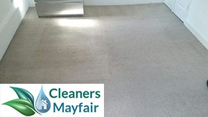 carpet cleaning services in mayfair